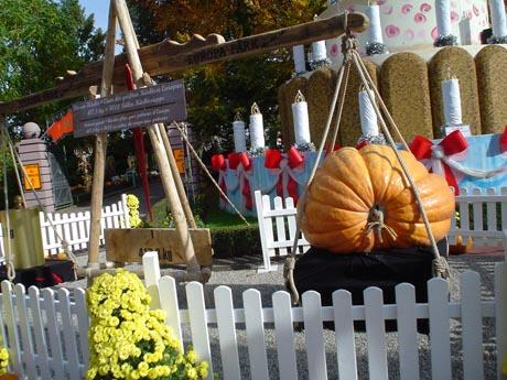 Einer der größten Kürbisse Europas, der zu Halloween 2005 in den Europa-Park gebracht wurde. Er wog 417,8 kg, das entspricht 4000 Tellern Kürbissuppe.