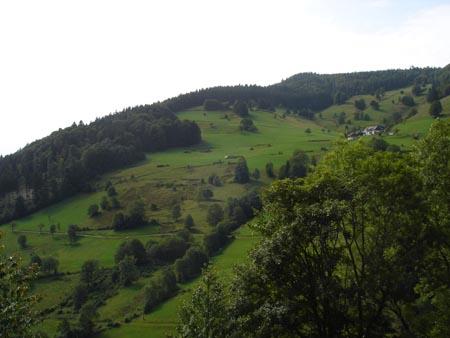 Malerische Landschaften im Schwarzwald.