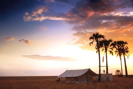 Faszination Afrika: Besonders reizvolle Reiseziele, die man am besten bei einer Safari kennenlernt, sind Botswana und Namibia. Foto: djd/Abendsonne Afrika