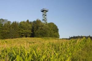 Die Ferienlandschaft Gehrenberg-Bodensee zeichnet sich nicht zuletzt durch ihre ursprüngliche Landschaft aus. Das Bild zeigt den Gehrenbergturm. Foto: djd/Tourismusgemeinschaft Gehrenberg-Bodensee e.V.