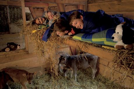 Familienferien auf einem Bauernhof in Mastrils, Graubünden. Dazu gehört das Schlafen im Stroh. Bild: Switzerland Tourism / swiss-image.ch/Robert Boesch