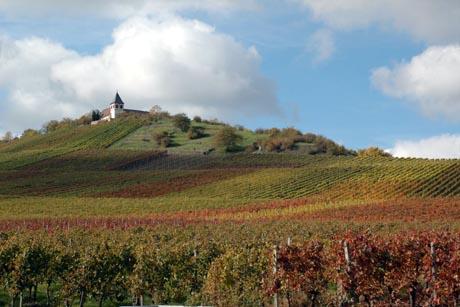 Das HeilbronnerLand ist eine der bedeutendsten Weinregionen in Deutschland. Foto: djd/Touristikgemeinschaft HeilbronnerLand e.V.