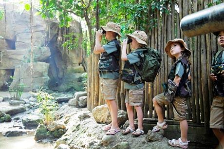 Abenteuer erleben im Jungle Dome. Bild: Center Parcs