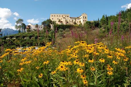 Schon von weitem ist im botanischen Garten von Trauttmansdorff der gelb leuchtende Sonnenhut zu sehen. Foto: djd/Die Gärten von Schloss Trauttmansdorff