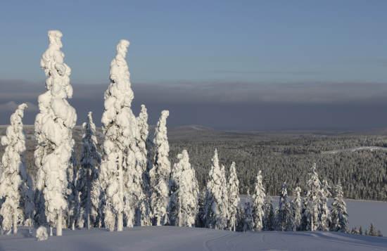 Finnische Winterlandschaft © Valkea