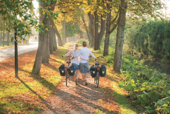 Mit dem Rad die herbstliche Nolde-Landschaft erkunden - Copyright Foto Oliver Franke