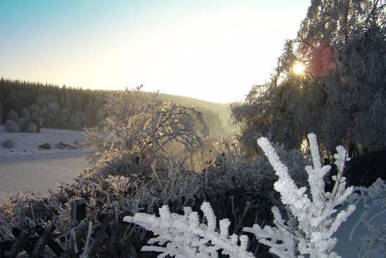 Im Oberharz führen schöne Winterwanderwege an den Stauseen entlang. Foto: djd/Tourismusbetrieb der Stadt Oberharz am Brocken - Rübeländer Tropfsteinhöhlen/M.Leonhardt