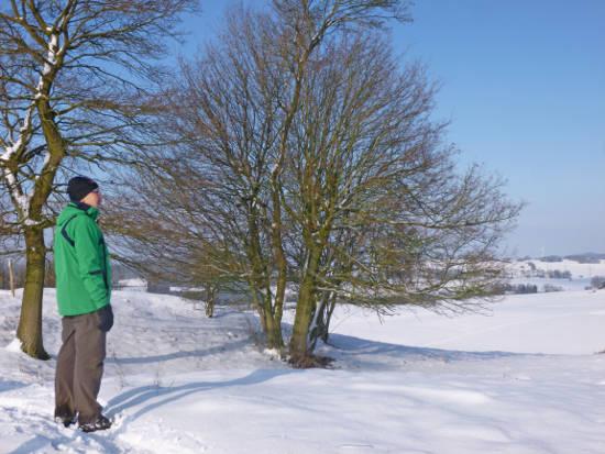 Wintervergnügen: Durchatmen und die Aussicht ins Harzvorland genießen. Foto: djd/Touristinformation Osterode am Harz