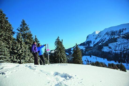 Les Paccots, Schneeschuhwandern. Bild © creationphoto.ch