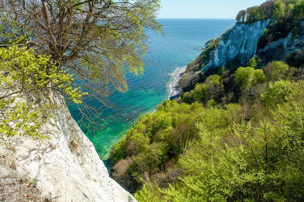 Im Frühjahr präsentiert sich die Ostseeinsel Rügen in besonders frischen Farben. Foto: djd/Nationalpark-Zentrum KÖNIGSSTUHL/NZK-Lehmann