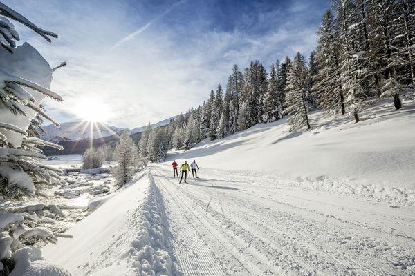 Langlauf im Val Müstair, Graubünden. Bild © Graubünden Ferien, Andrea Badrutt