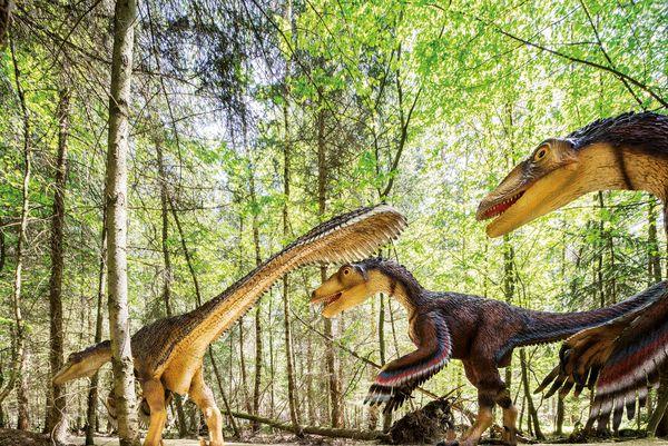 Im Dinosaurier-Freilichtmuseum treffen die faszinierten Besucher auf über 60 große und kleine Dinosauriermodelle. Foto: djd/Naturpark Altmühltal/Sascha Kletzsch