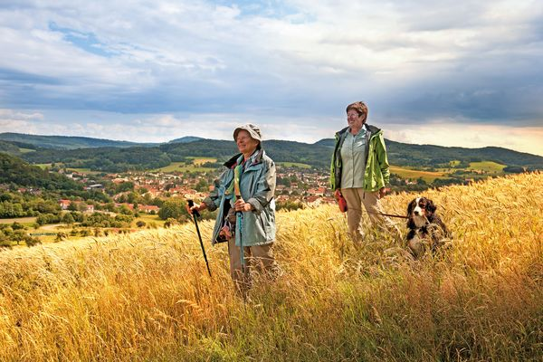 Eine Wanderung durch das sanfte Bergland des Odenwaldes macht Menschen und Vierbeinern Spaß. Foto: djd / Odenwald Tourismus GmbH