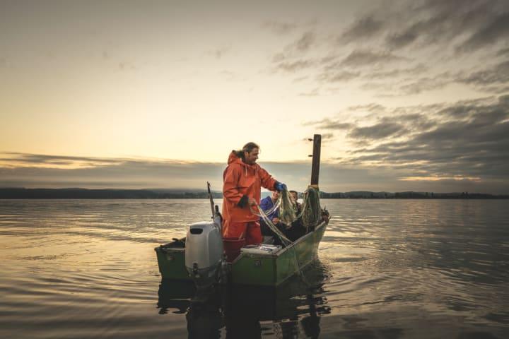 Berufsfischer Rolf Meier mit Gästen auf dem Bodensee, Ostschweiz. Copyright: Schweiz Tourismus / Ivo Scholz