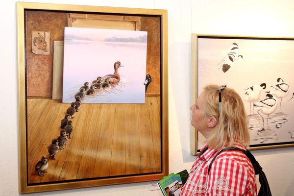 """In der Halberstädter Ausstellung """"Moderne Vogelbilder"""" wählen die Besucher ihren Publikumssieger unter den besten deutschen Vogelmalern. Foto: djd/Halberstadt Information/Museum Heineanum"""