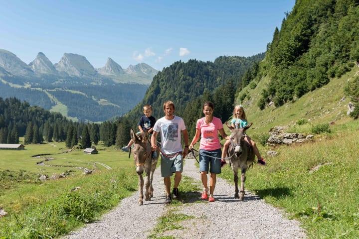 Eselreiten im Toggenburg. Bild: Schweiz Tourismus