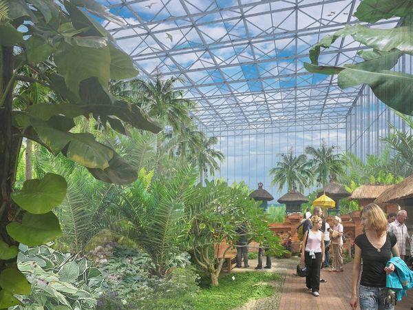 In der Tropenhalle werden echte Exoten aus der Pflanzenwelt vorgestellt. Bild: IGA Berlin 2017 / C. Uhlemann / Frank Sperling / Lichtschwärmer