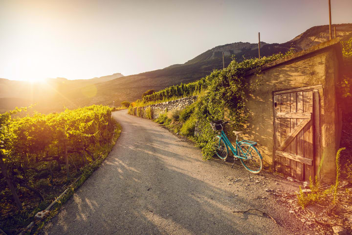 Weintourismus im Wallis: Weg durch die Rebberge im Salgesch. Copyright: Valais Wallis-Promotion, Pascal Gertschen