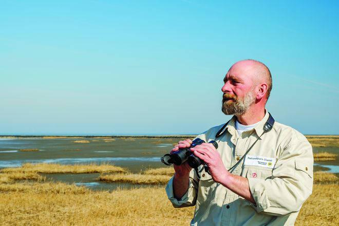 Nationalpark-Ranger Michael Beverungen (c) M. Stock / LKN.SH