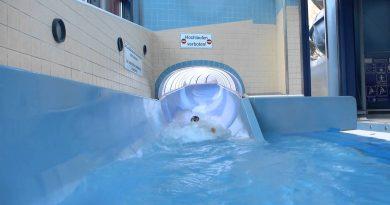 Mons-Tabor-Bad Montabaur - Tunnelrutsche Onride