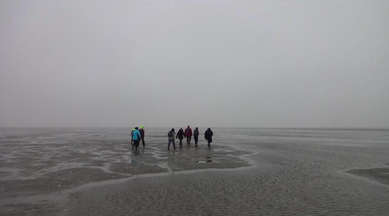 Eine Gruppe Wattwanderer im winterlichen Watt (c) www.nordseetourismus.de