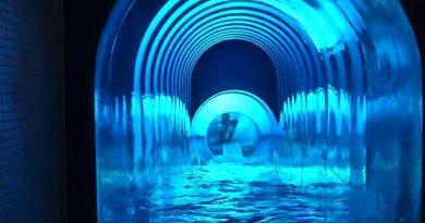 Wasserwelt Braunschweig - Turborutsche Onride