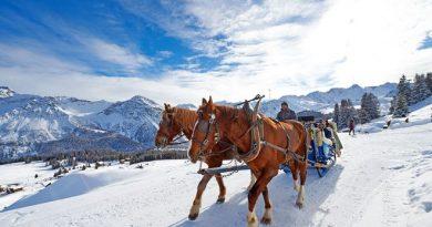 Abschalten und entspannen gelingt auch bei einer Pferdekutschfahrt durch die verschneite Landschaft rund um Arosa. Foto: djd/Alpine Pearls/Arosa Tourismus