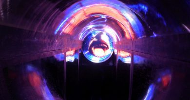 H2O Herford - Thunderbird Themenrutsche / Black Hole NEU 2014
