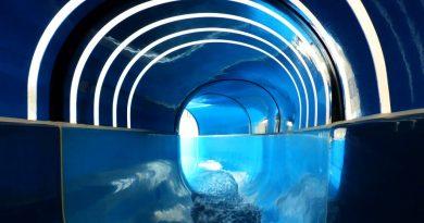 blaue Riesenrutsche :: Tunnelrutsche | Grömitzer Welle Grömitz
