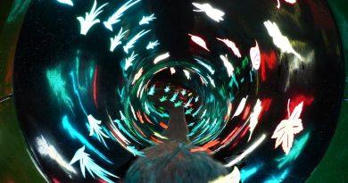 Black Hole :: Röhrenrutsche | Badepark Bentheim Bad Bentheim